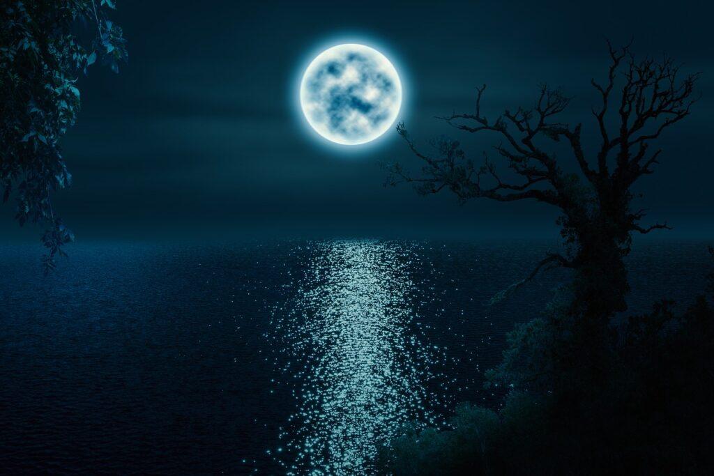 trees, moon, lake